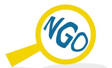 NGO - co to?